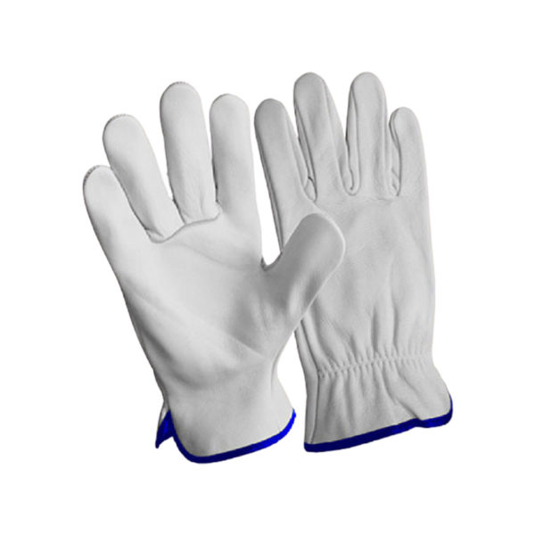 LEATHER GRAIN DRIVING GLOVES 1 1